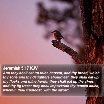 Jeremiah 5:17 KJV Bible Verse Image