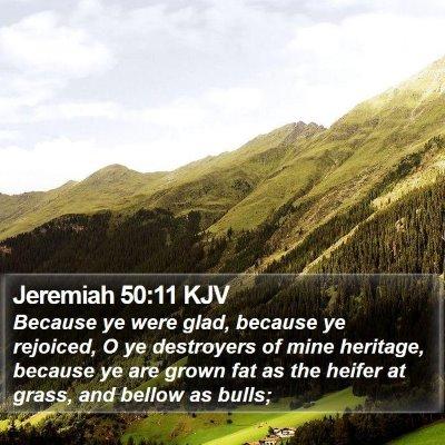 Jeremiah 50:11 KJV Bible Verse Image