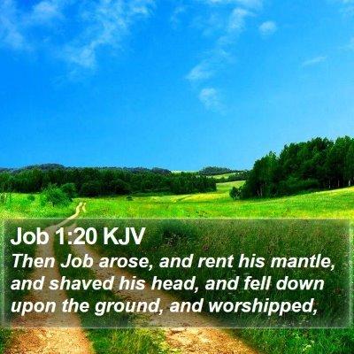 Job 1:20 KJV Bible Verse Image