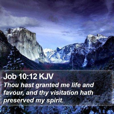 Job 10:12 KJV Bible Verse Image