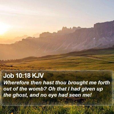 Job 10:18 KJV Bible Verse Image