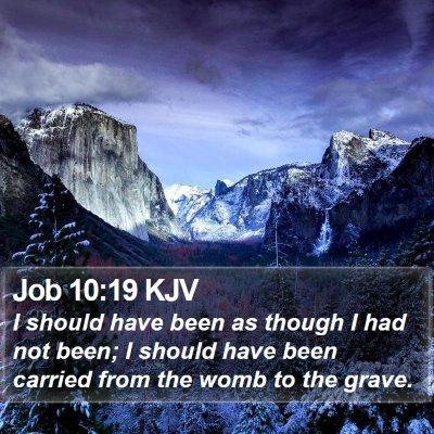 Job 10:19 KJV Bible Verse Image