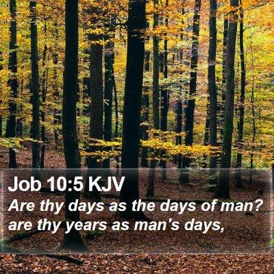 Job 10:5 KJV Bible Verse Image