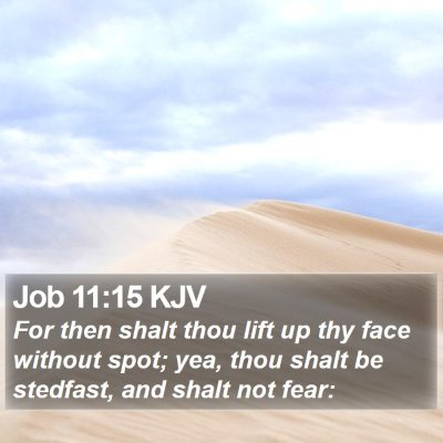 Job 11:15 KJV Bible Verse Image