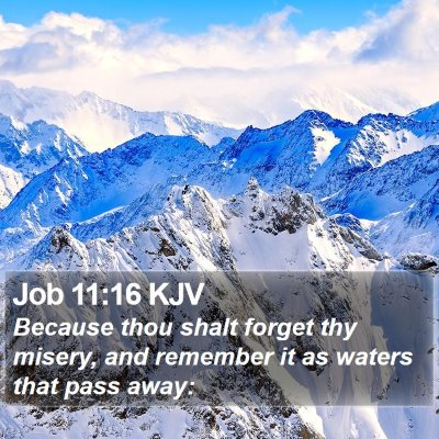 Job 11:16 KJV Bible Verse Image