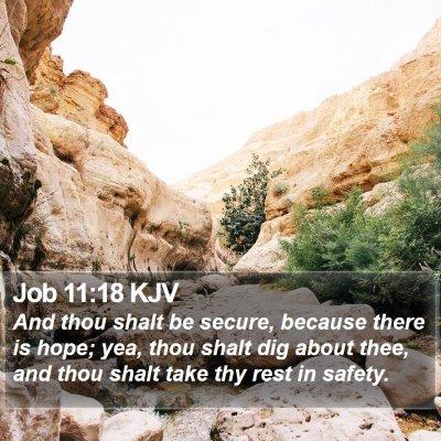 Job 11:18 KJV Bible Verse Image