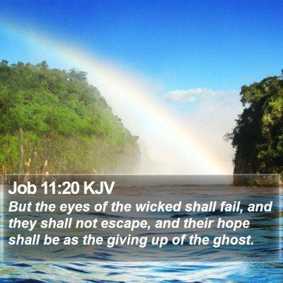 Job 11:20 KJV Bible Verse Image