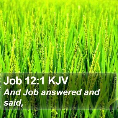 Job 12:1 KJV Bible Verse Image