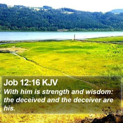 Job 12:16 KJV Bible Verse Image