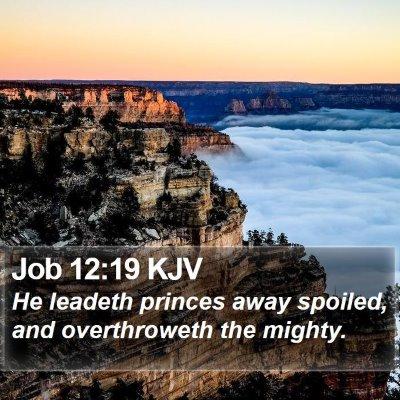 Job 12:19 KJV Bible Verse Image