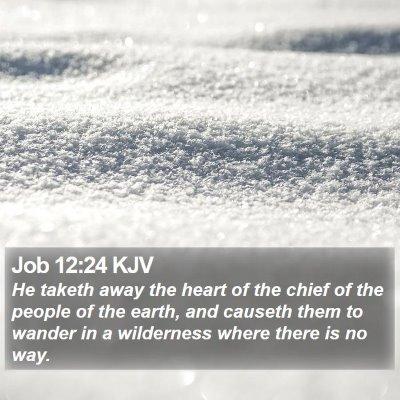 Job 12:24 KJV Bible Verse Image