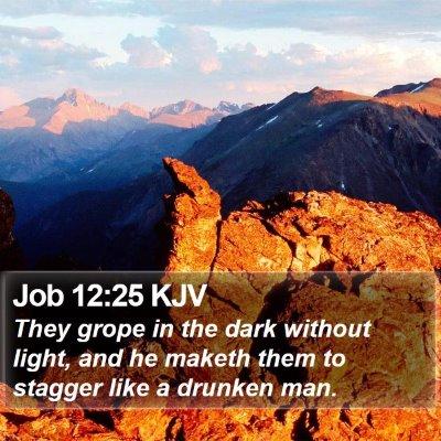 Job 12:25 KJV Bible Verse Image