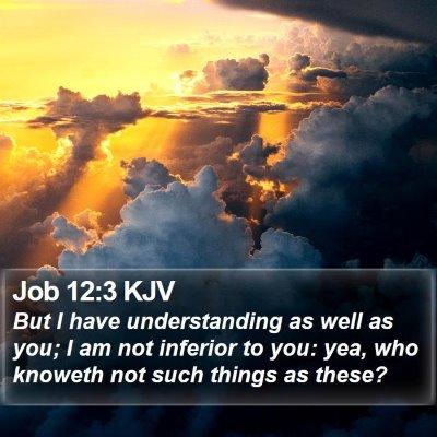 Job 12:3 KJV Bible Verse Image