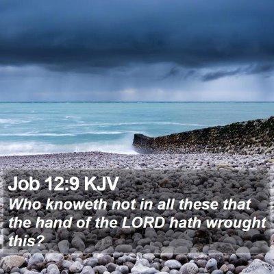 Job 12:9 KJV Bible Verse Image