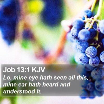 Job 13:1 KJV Bible Verse Image
