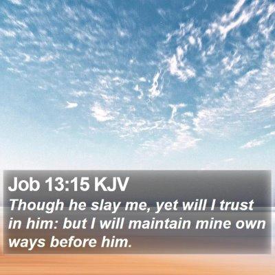 Job 13:15 KJV Bible Verse Image