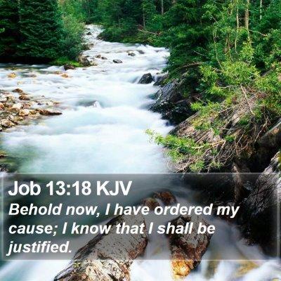 Job 13:18 KJV Bible Verse Image