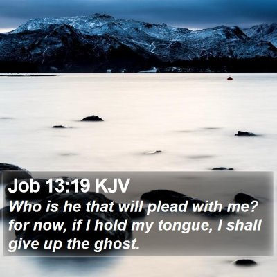 Job 13:19 KJV Bible Verse Image