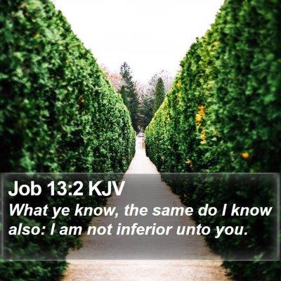 Job 13:2 KJV Bible Verse Image