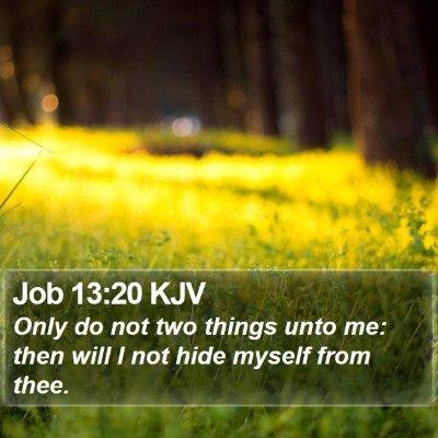 Job 13:20 KJV Bible Verse Image