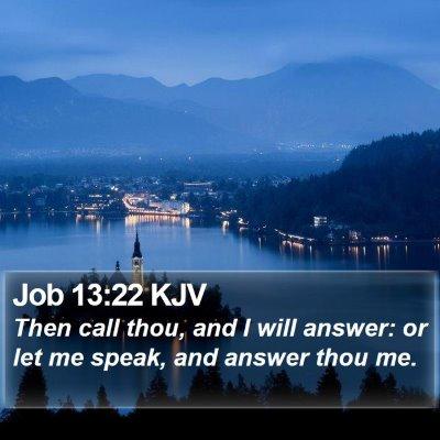 Job 13:22 KJV Bible Verse Image