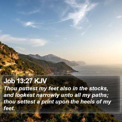 Job 13:27 KJV Bible Verse Image