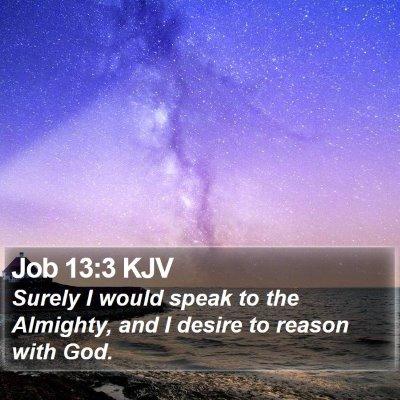 Job 13:3 KJV Bible Verse Image
