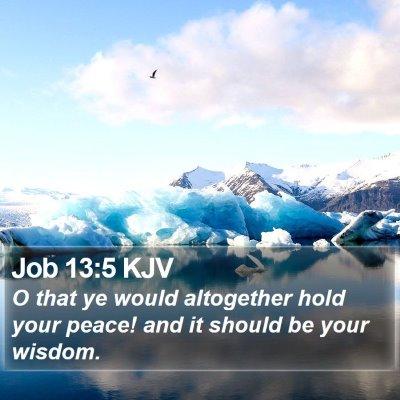 Job 13:5 KJV Bible Verse Image
