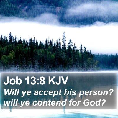 Job 13:8 KJV Bible Verse Image