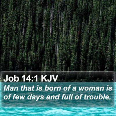 Job 14:1 KJV Bible Verse Image