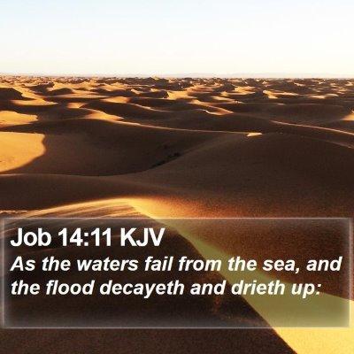 Job 14:11 KJV Bible Verse Image