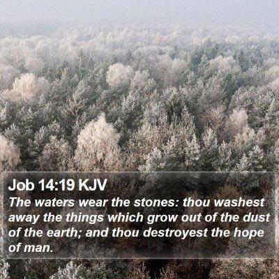 Job 14:19 KJV Bible Verse Image