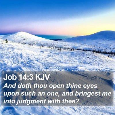 Job 14:3 KJV Bible Verse Image