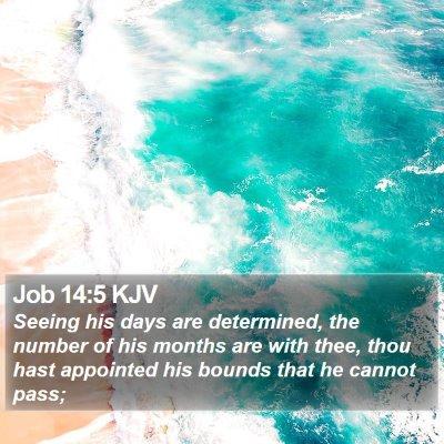 Job 14:5 KJV Bible Verse Image