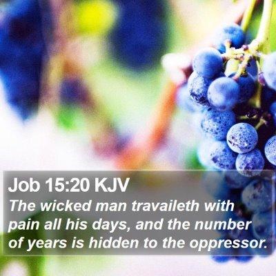 Job 15:20 KJV Bible Verse Image