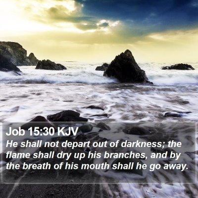 Job 15:30 KJV Bible Verse Image