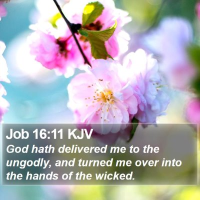 Job 16:11 KJV Bible Verse Image