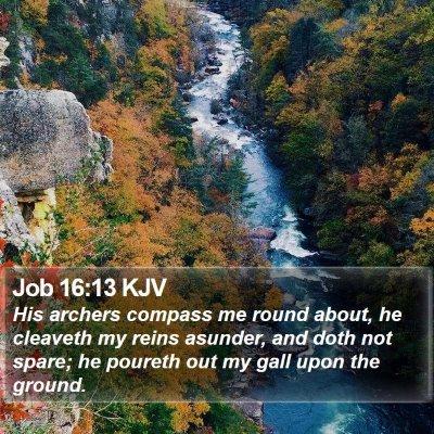 Job 16:13 KJV Bible Verse Image
