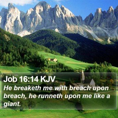 Job 16:14 KJV Bible Verse Image