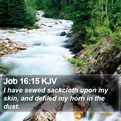 Job 16:15 KJV Bible Verse Image