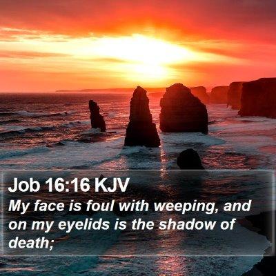 Job 16:16 KJV Bible Verse Image