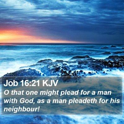 Job 16:21 KJV Bible Verse Image