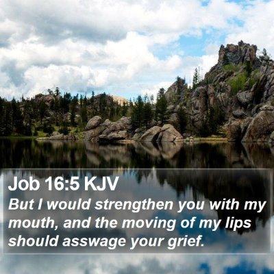 Job 16:5 KJV Bible Verse Image
