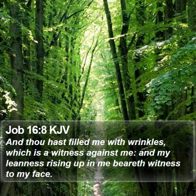 Job 16:8 KJV Bible Verse Image