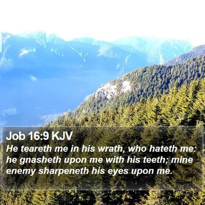 Job 16:9 KJV Bible Verse Image