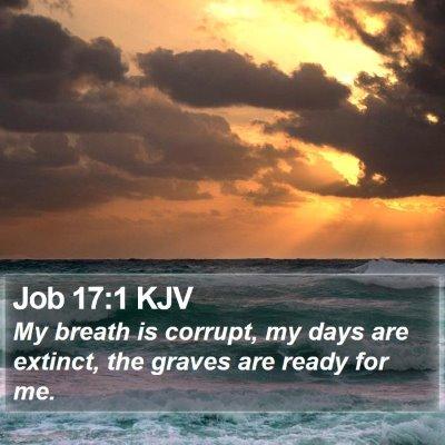 Job 17:1 KJV Bible Verse Image