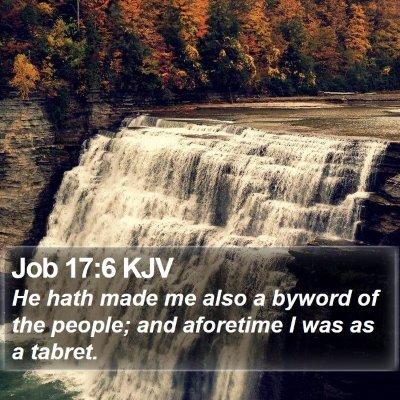 Job 17:6 KJV Bible Verse Image