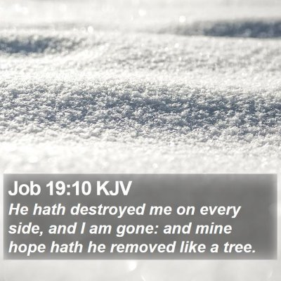 Job 19:10 KJV Bible Verse Image
