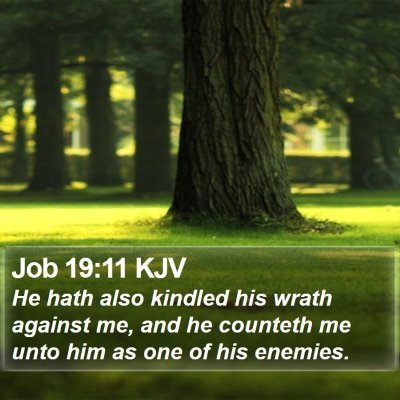Job 19:11 KJV Bible Verse Image