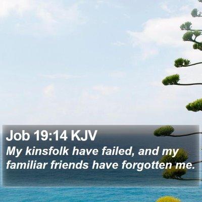 Job 19:14 KJV Bible Verse Image
